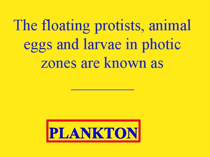 The floating protists, animal eggs and larvae in photic zones are known as ____