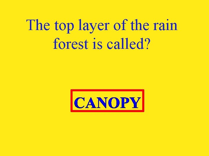 The top layer of the rain forest is called?