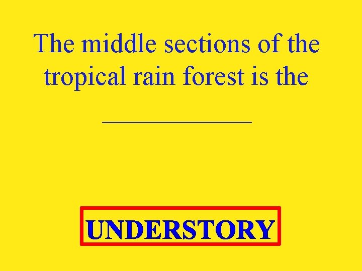 The middle sections of the tropical rain forest is the ______
