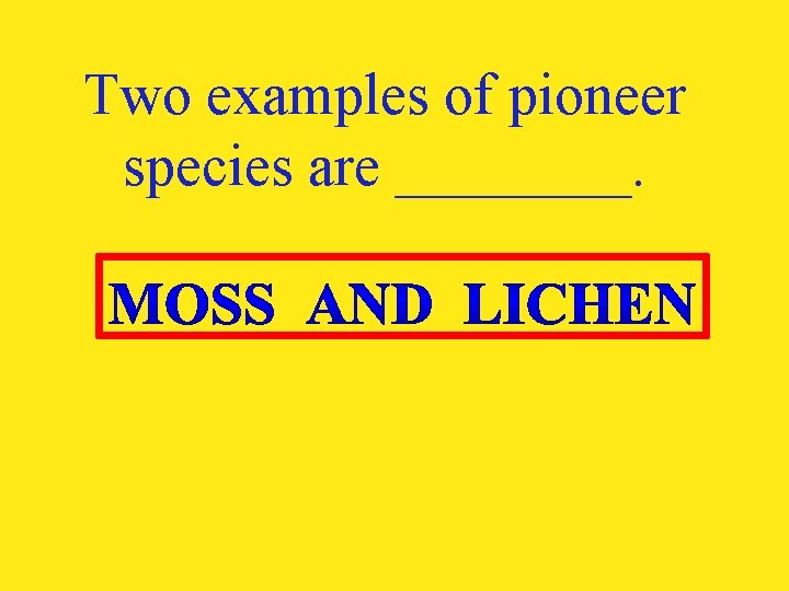 Two examples of pioneer species are ____.