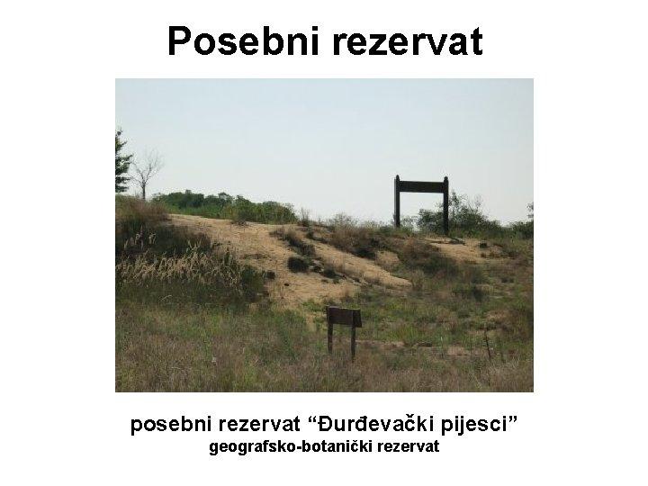 """Posebni rezervat posebni rezervat """"Đurđevački pijesci"""" geografsko-botanički rezervat"""
