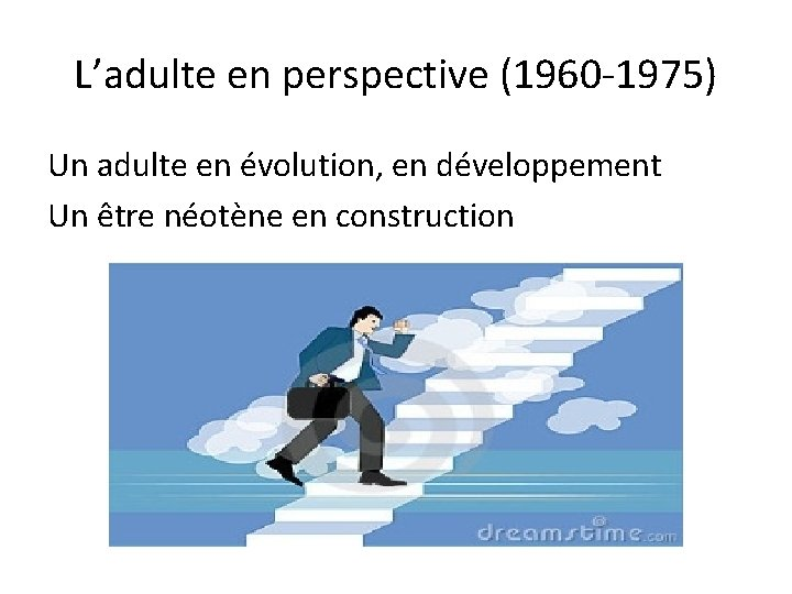 L'adulte en perspective (1960 -1975) Un adulte en évolution, en développement Un être néotène