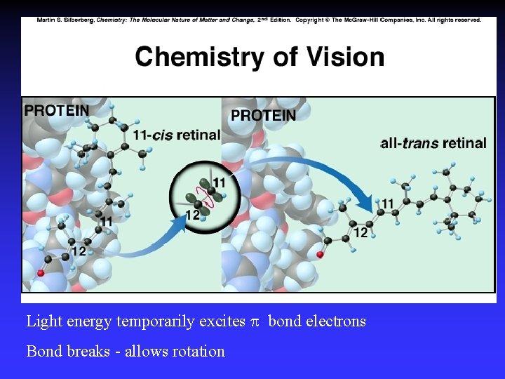 Light energy temporarily excites bond electrons Bond breaks - allows rotation