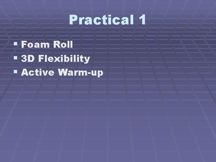 Practical 1 § Foam Roll § 3 D Flexibility § Active Warm-up