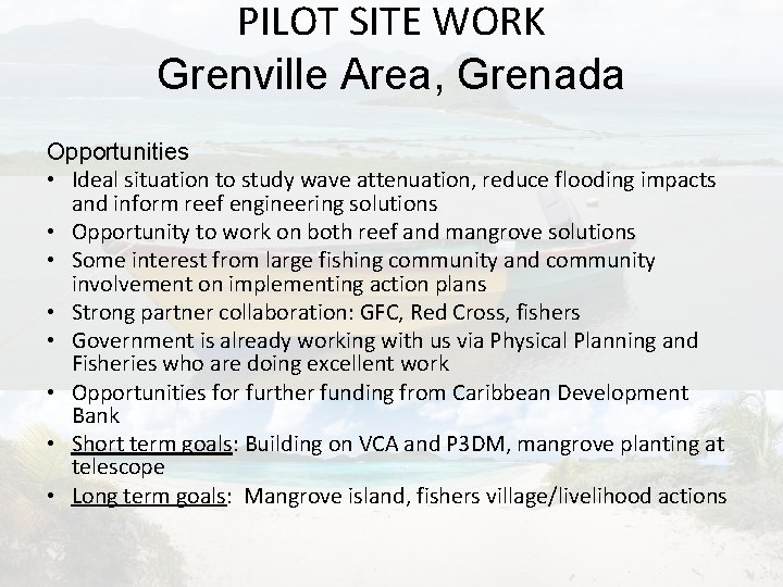 PILOT SITE WORK Grenville Area, Grenada Opportunities • Ideal situation to study wave attenuation,