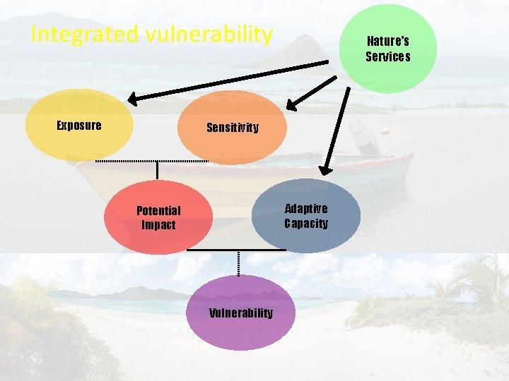 Integrated vulnerability Exposure Nature's Services Sensitivity Adaptive Capacity Potential Impact Vulnerability