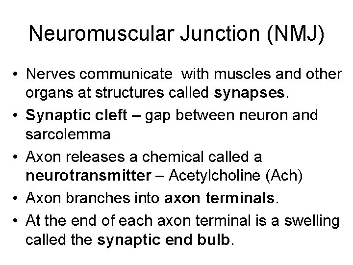 Neuromuscular Junction (NMJ) • Nerves communicate with muscles and other organs at structures called