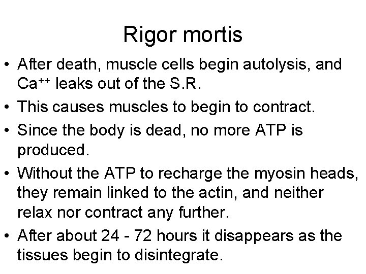 Rigor mortis • After death, muscle cells begin autolysis, and Ca++ leaks out of