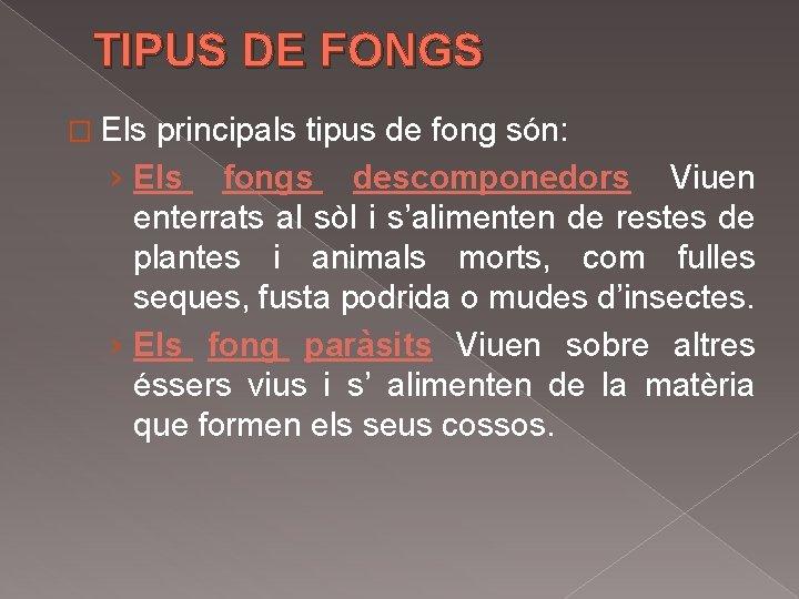 TIPUS DE FONGS � Els principals tipus de fong són: › Els fongs descomponedors