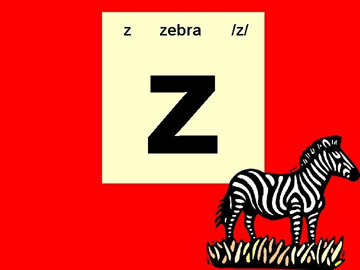 z z zebra /z/