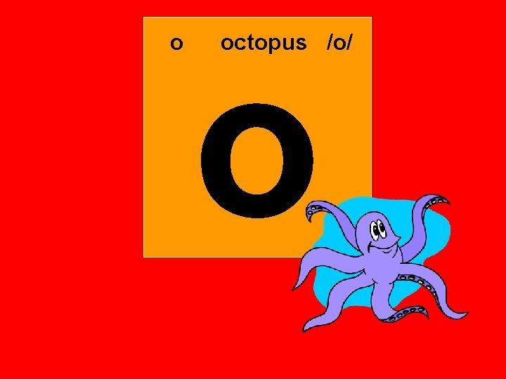 o o octopus /o/