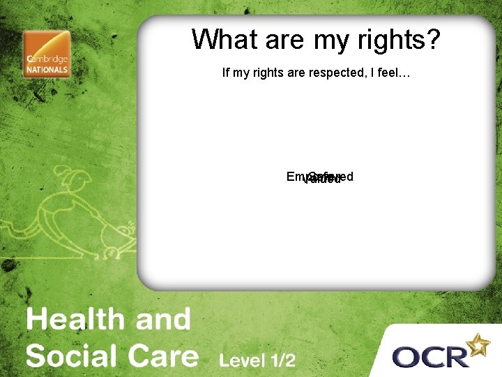 What are my rights? If my rights are respected, I feel… Empowered Safe Valued
