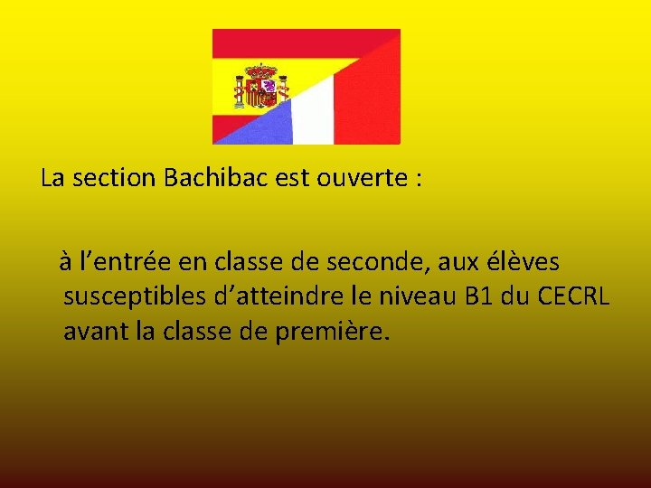 La section Bachibac est ouverte : à l'entrée en classe de seconde, aux élèves