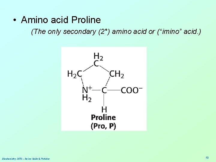 """• Amino acid Proline (The only secondary (2°) amino acid or (""""imino"""" acid."""