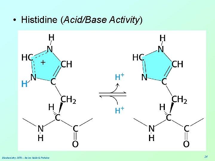 • Histidine (Acid/Base Activity) Biochemistry 3070 – Amino Acids & Proteins 24