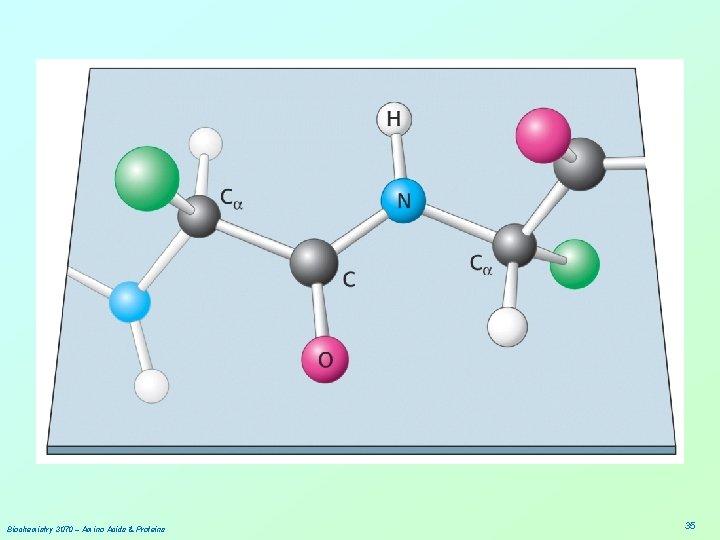 Biochemistry 3070 – Amino Acids & Proteins 35