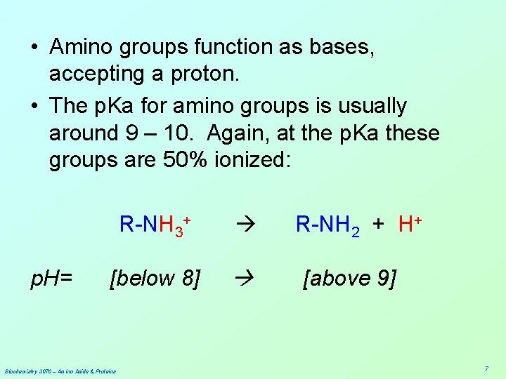 • Amino groups function as bases, accepting a proton. • The p. Ka