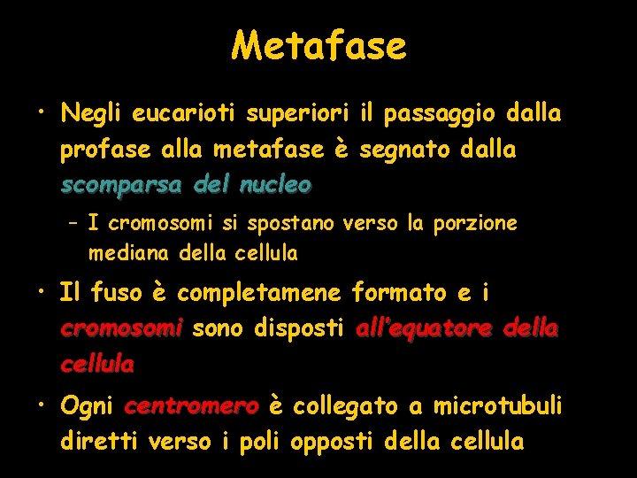 Metafase • Negli eucarioti superiori il passaggio dalla profase alla metafase è segnato dalla