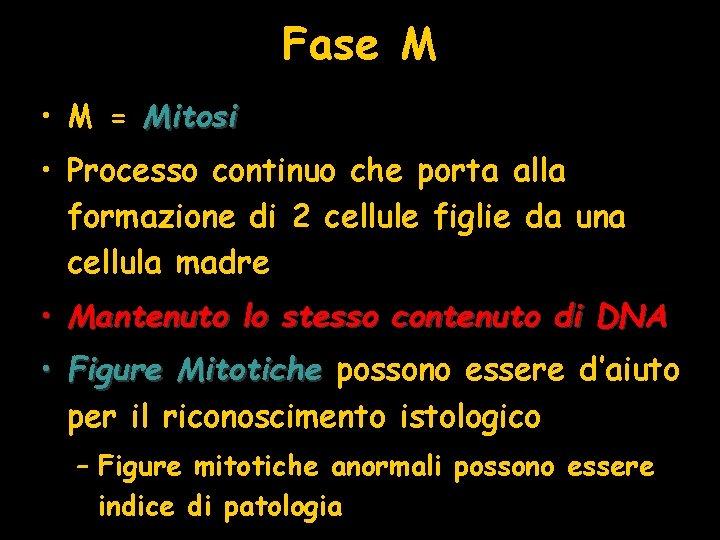 Fase M • M = Mitosi • Processo continuo che porta alla formazione di