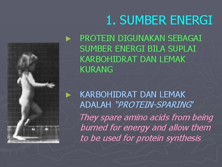 1. SUMBER ENERGI ► PROTEIN DIGUNAKAN SEBAGAI SUMBER ENERGI BILA SUPLAI KARBOHIDRAT DAN LEMAK