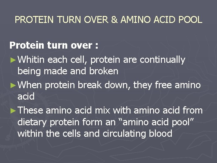 PROTEIN TURN OVER & AMINO ACID POOL Protein turn over : ► Whitin each