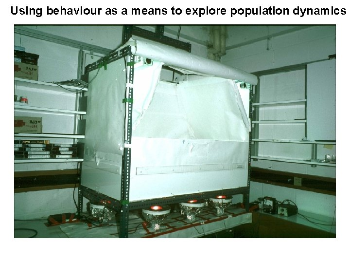 Using behaviour as a means to explore population dynamics