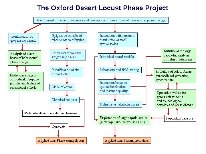 The Oxford Desert Locust Phase Project Development of behavioural assay and description of time
