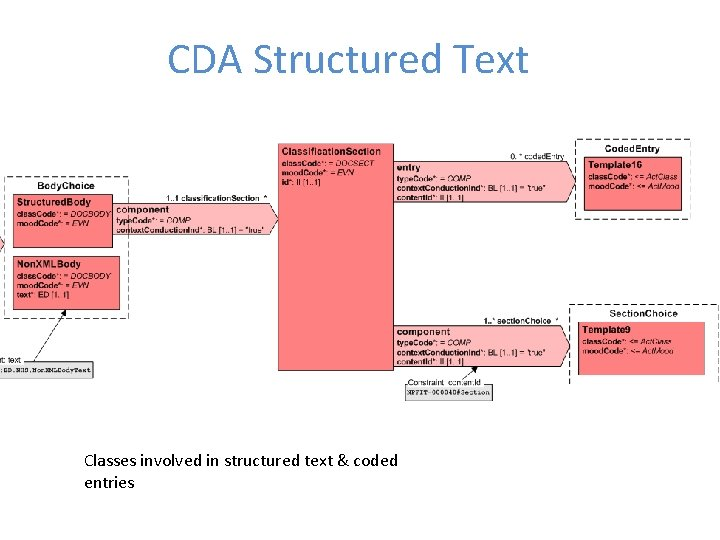 CDA Structured Text Classes involved in structured text & coded entries