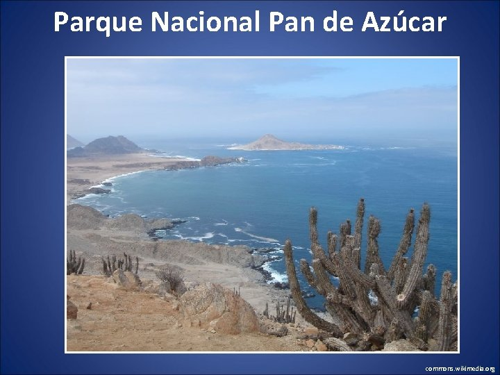 Parque Nacional Pan de Azúcar commons. wikimedia. org
