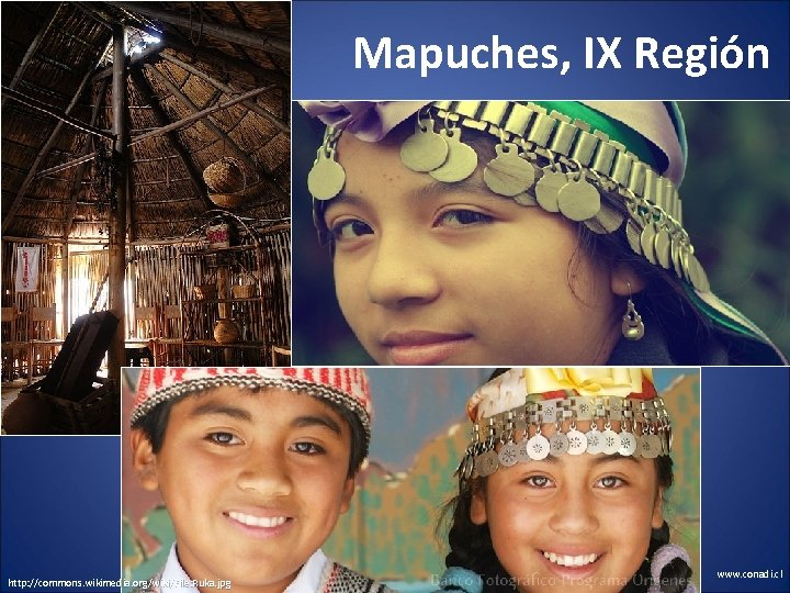 Mapuches, IX Región http: //commons. wikimedia. org/wiki/File: Ruka. jpg www. conadi. cl