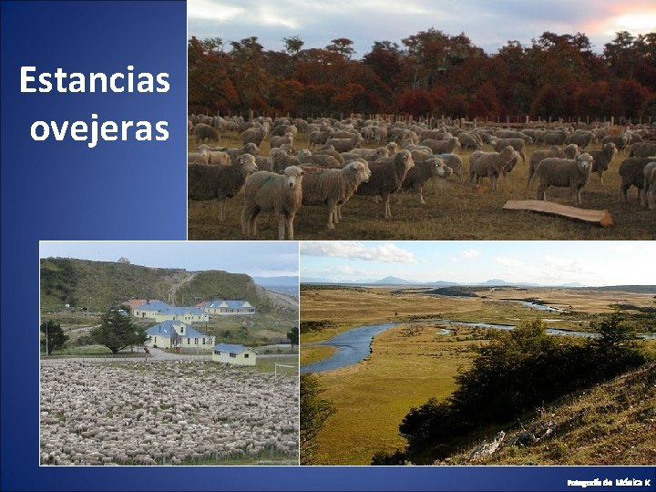 Estancias ovejeras Fotografía de Mónica K