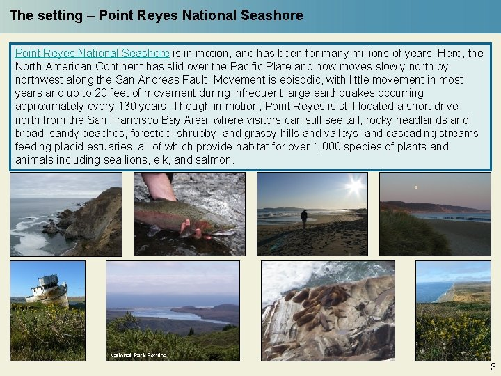 The setting – Point Reyes National Seashore is in motion, and has been for