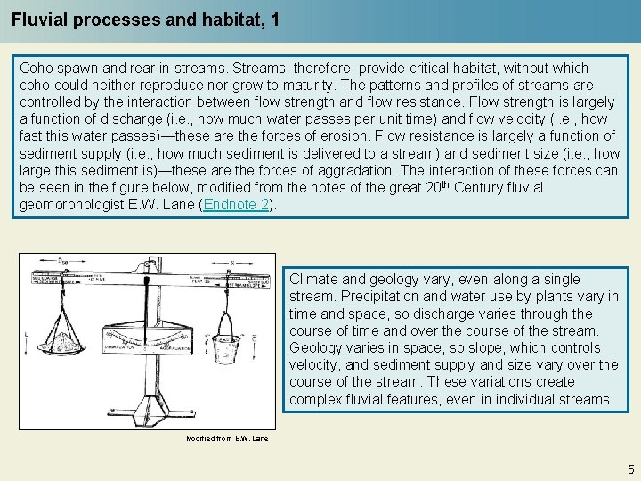 Fluvial processes and habitat, 1 Coho spawn and rear in streams. Streams, therefore, provide