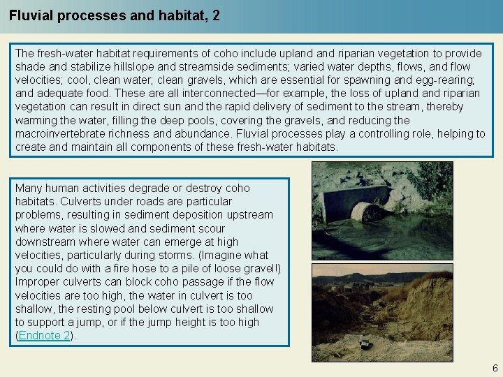 Fluvial processes and habitat, 2 The fresh-water habitat requirements of coho include upland riparian