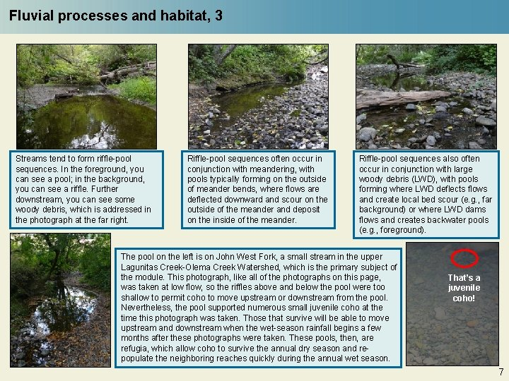 Fluvial processes and habitat, 3 Streams tend to form riffle-pool sequences. In the foreground,