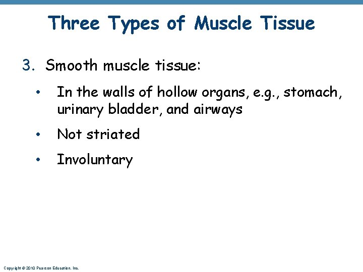 Three Types of Muscle Tissue 3. Smooth muscle tissue: • In the walls of