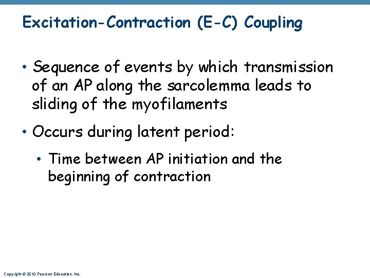 Excitation-Contraction (E-C) Coupling • Sequence of events by which transmission of an AP along