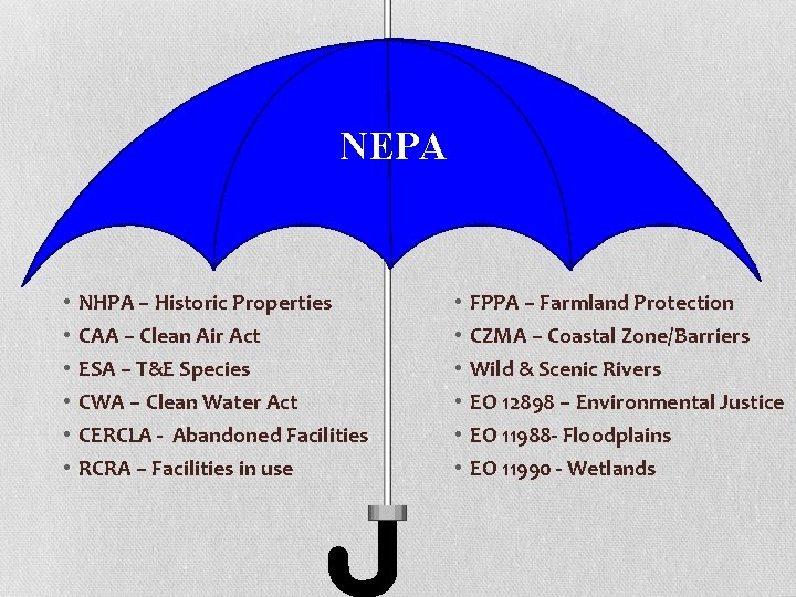 NEPA • • • NHPA – Historic Properties CAA – Clean Air Act ESA