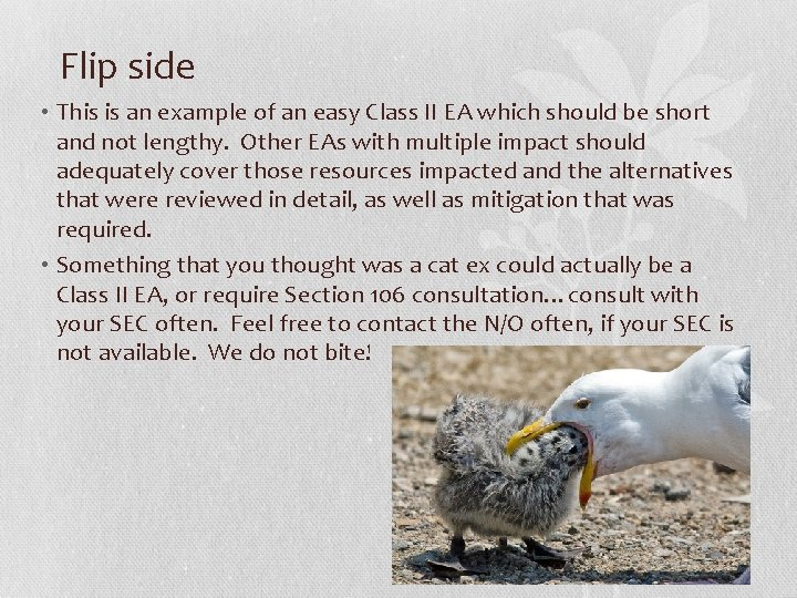 Flip side • This is an example of an easy Class II EA which