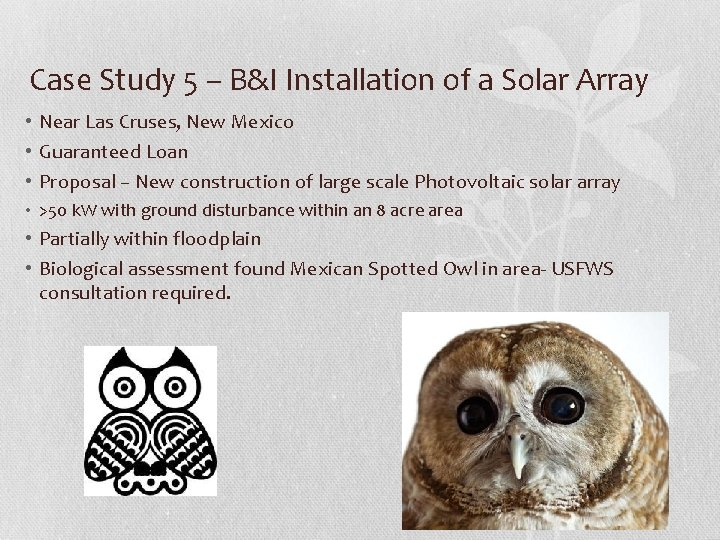 Case Study 5 – B&I Installation of a Solar Array • Near Las Cruses,