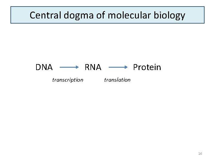 Central dogma of molecular biology DNA transcription RNA Protein translation 16
