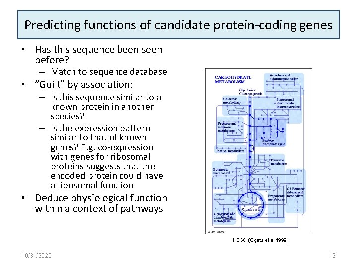 Predicting functions of candidate protein-coding genes • Has this sequence been seen before? –