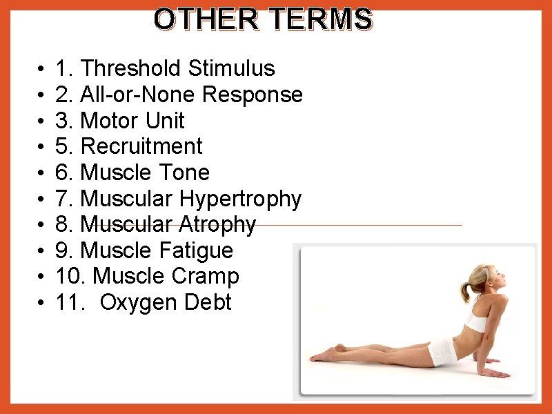 OTHER TERMS • • • 1. Threshold Stimulus 2. All-or-None Response 3. Motor Unit