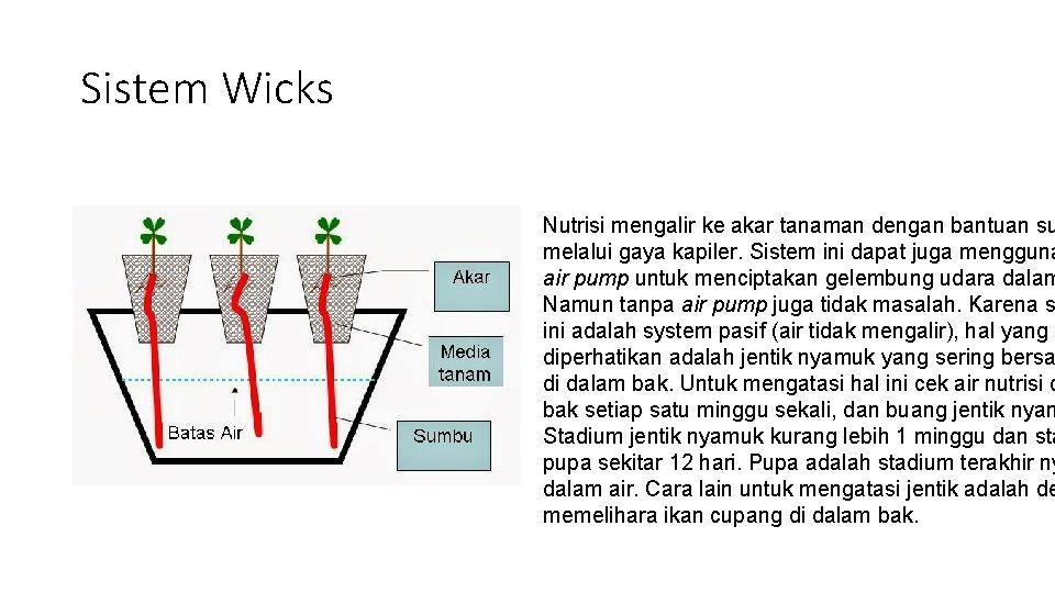 Sistem Wicks Nutrisi mengalir ke akar tanaman dengan bantuan su melalui gaya kapiler. Sistem