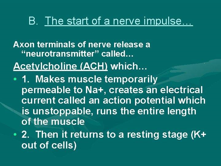 "B. The start of a nerve impulse… Axon terminals of nerve release a ""neurotransmitter"""