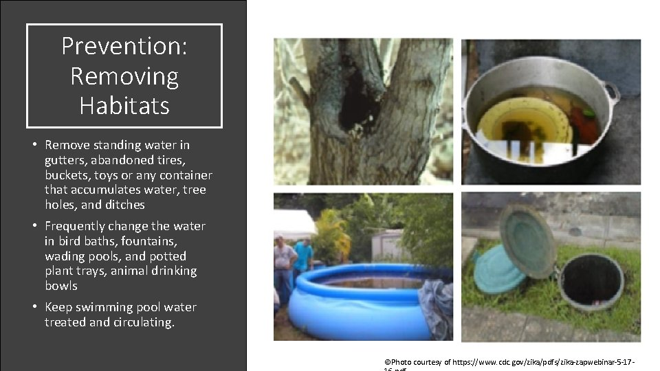 Prevention: Removing Habitats • Remove standing water in gutters, abandoned tires, buckets, toys or