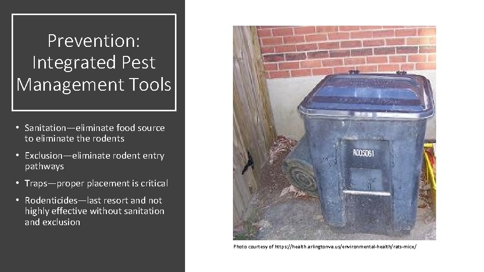 Prevention: Integrated Pest Management Tools • Sanitation—eliminate food source to eliminate the rodents •