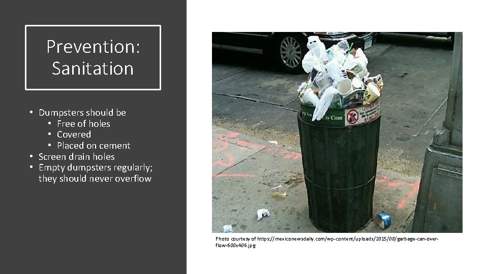 Prevention: Sanitation • Dumpsters should be • Free of holes • Covered • Placed