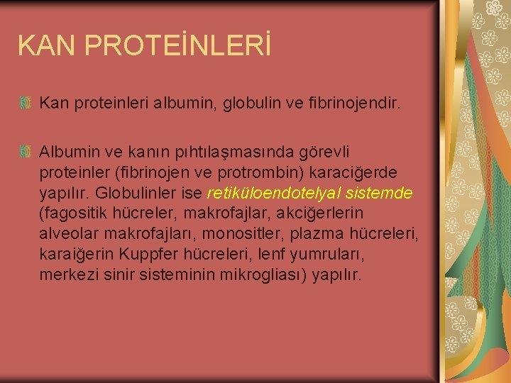 KAN PROTEİNLERİ Kan proteinleri albumin, globulin ve fibrinojendir. Albumin ve kanın pıhtılaşmasında görevli proteinler
