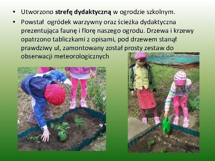 • Utworzono strefę dydaktyczną w ogrodzie szkolnym. • Powstał ogródek warzywny oraz ścieżka